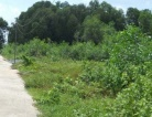 Land for sale Long Thanh